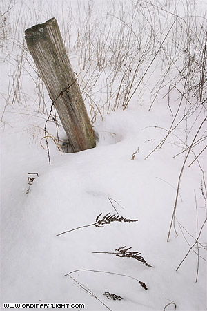 Photograph: Fence Post In Snow