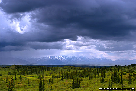 Photograph: Denali Foothills