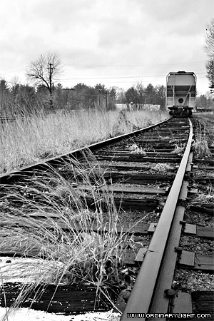 Photograph: Down The Line